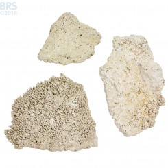 Tonga Shelf (Flat Plates) Dry Live Rock