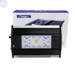 ZT-6500A QMaven Series LED Light - Zetlight
