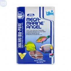 Hikari Bio-Pure Frozen Mega-Marine Angel 3.5
