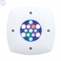 Prime HD LED Module (White) Aqua Illumination