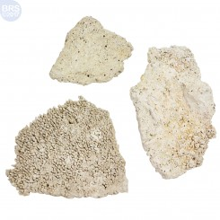 BRS Tonga Shelf (Flat Plates) Dry Live Rock