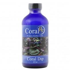 Coral Dip - 8 oz