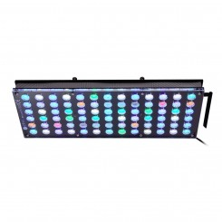 Atlantik V4 (GEN 2) LED Light Fixture