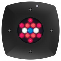Prime Fuge HD Refugium Light