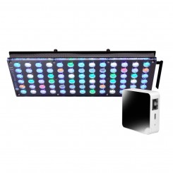 Atlantik V4 (GEN 2) LED Light Fixture - With Gateway2