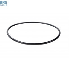 """O-Ring for 20"""" Canister (Spartan)"""