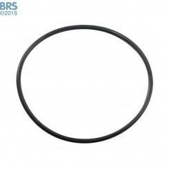 big-blue o-ring