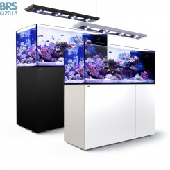 Reefer Peninsula Deluxe 650 System (140 Gal) - Red Sea