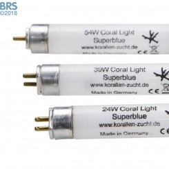 Coral Light Super Blue T5 Lamp - Korallen-Zucht