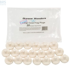 Oceans Wonders Large Ceramic Coral Frag Plugs - 20 Pack