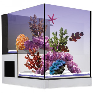 Concept Glass Abyss Peninsula 20g AIO Aquarium - Innovative Marine