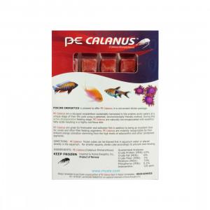 Frozen Calanus - Piscine Energetics