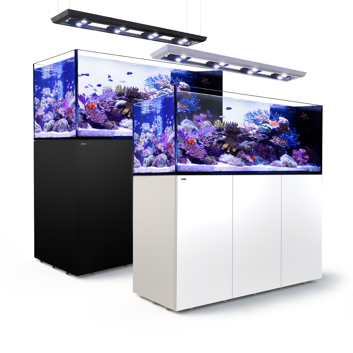 Reefer Peninsula Deluxe 650 System 140 Gal Red Sea