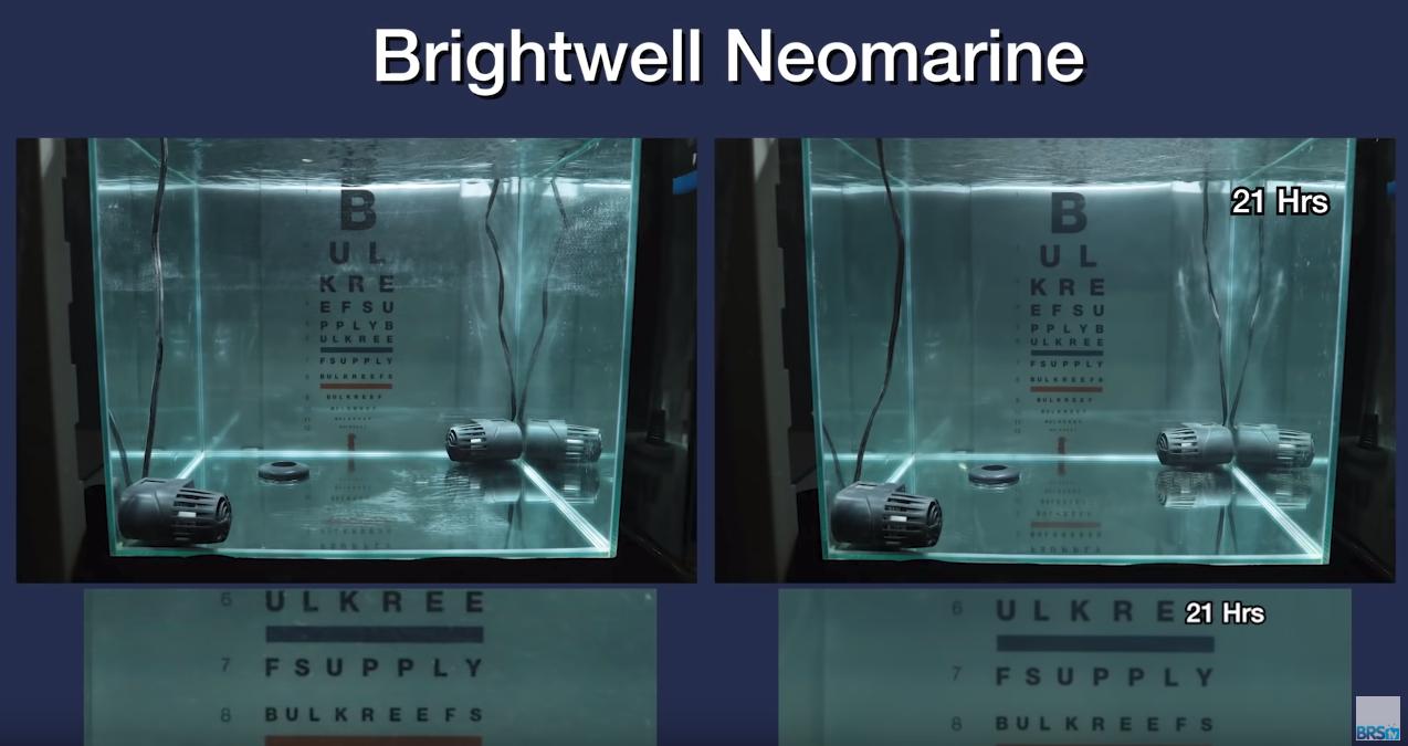 Saltwater Clarity Chart Brightwell NeoMarine