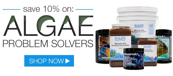 Algae Sale