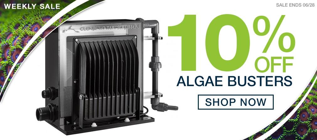 Weekly Sale Algae Busters