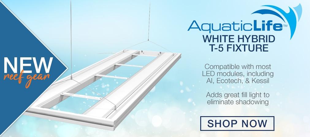 AquaticLifeNew