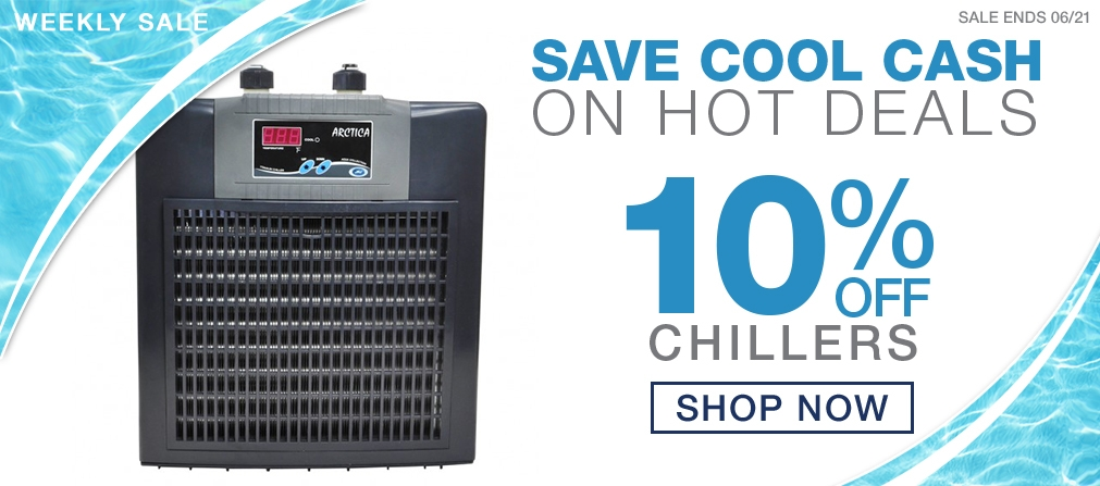 Weekly Sale Chillers & Fans