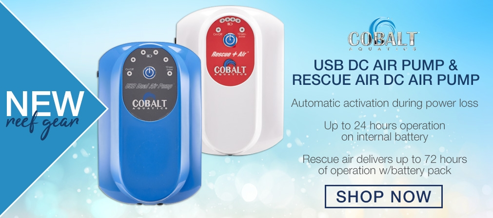 Cobalt Air Pumps