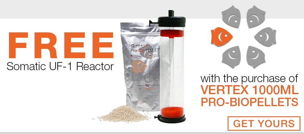 Free Somatic Reactor with Vertex Biopellets