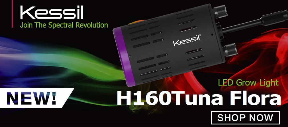 New Kessil H160 LED Light
