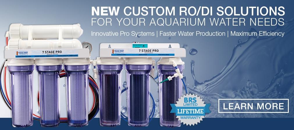 New RODI Systems