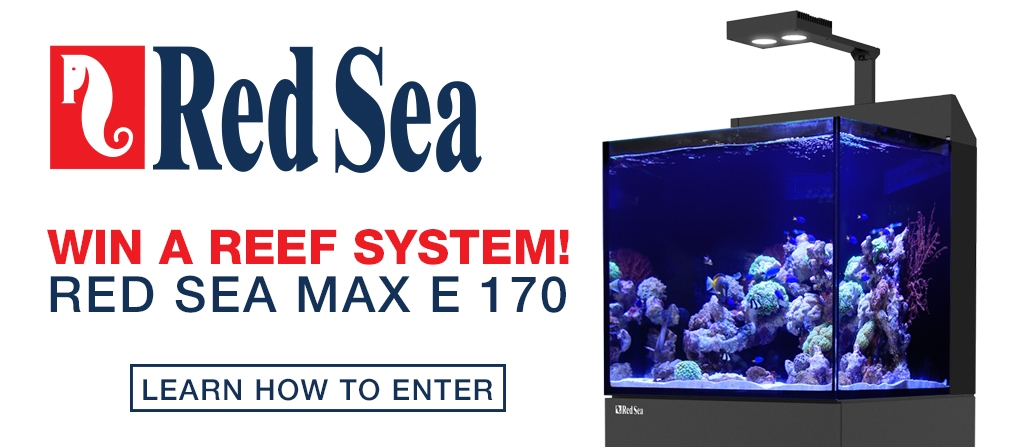Win a Red Sea Max-E 170 Aquarium