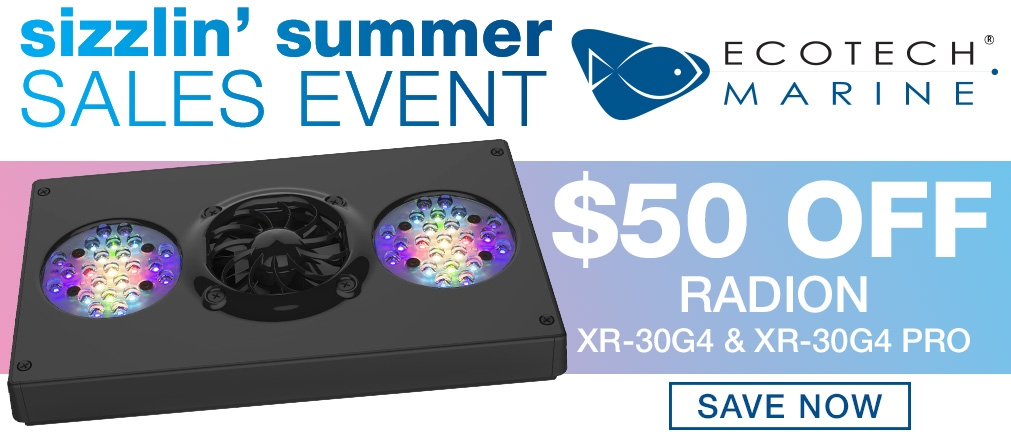 Radion Summer Sale