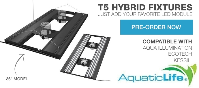 Pre-order Aquatic Life Hybrid Lights