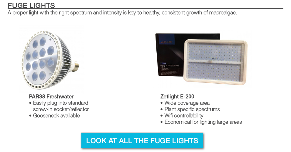 Refugium Light Options