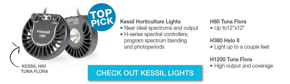 Kessil Refugium Lights
