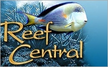 Reef Central Forum Logo